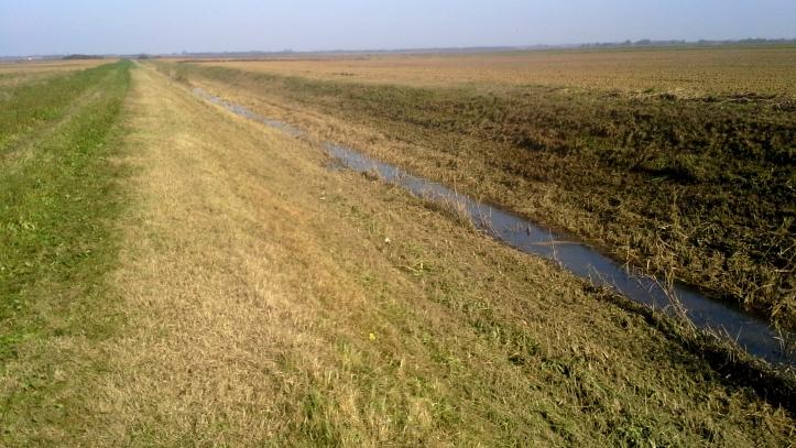 kanal čemernica