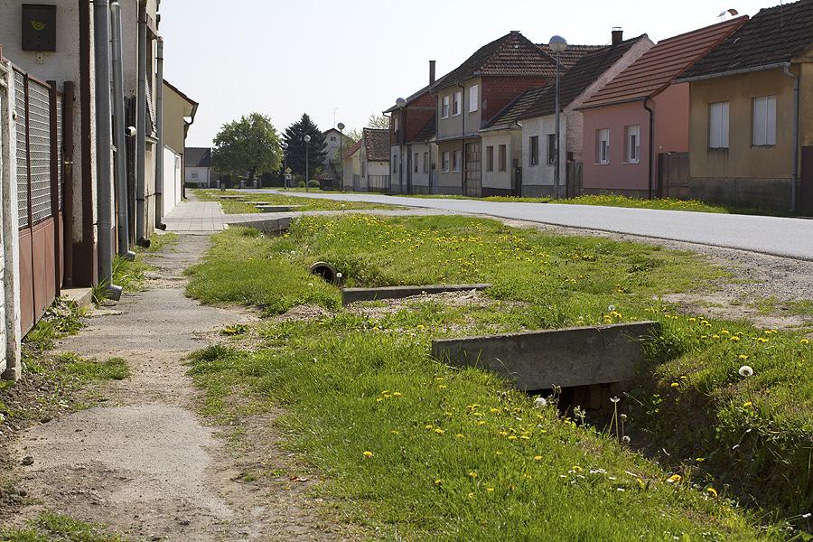 basaricek (4)